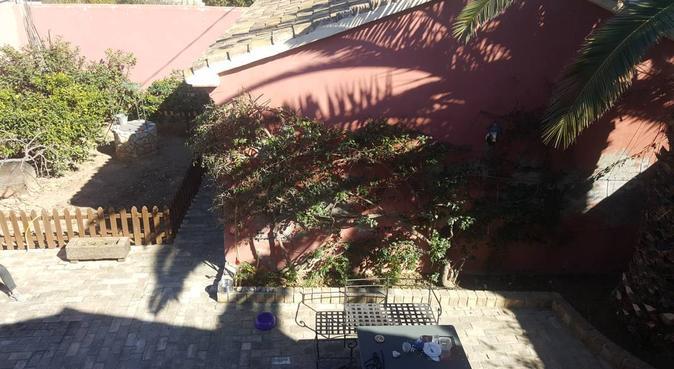 My casa es su casa        🐶, canguro en Valencia, Spagna