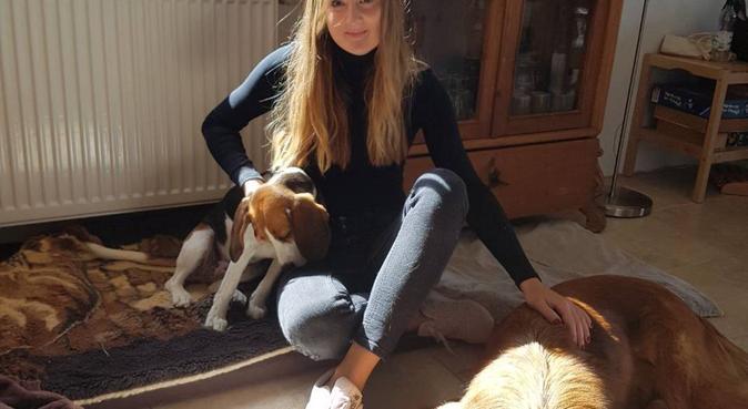 Gassi mit Lui, Hundesitter in Berlin Friedenau