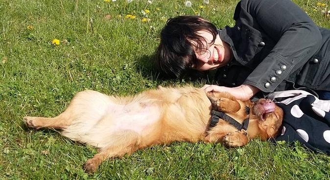 Lille à Pattes, promenades et visites, dog sitter à Lille