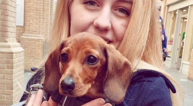 Happy walks and cuddles in Canterbury, dog sitter in Canterbury