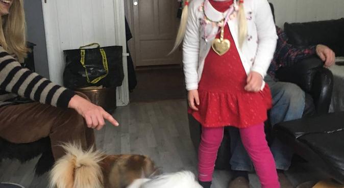 To glade hundepassere som elsker hunder, hundepassere i Porsgrunn