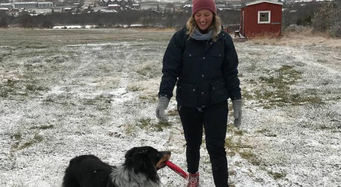 Treningskamerat? Bli med da vel!!, hundvakt nära Oslo