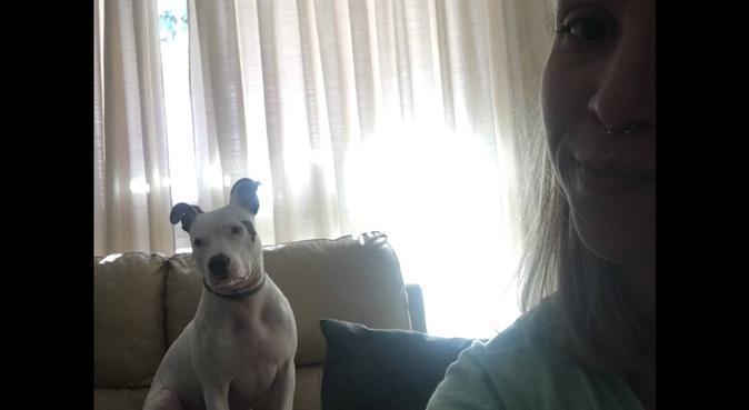 Paraiso canino, canguro en Pinto