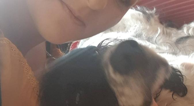 Les animaux de la poupée Russe, dog sitter à Saint-sébastien-sur-loire
