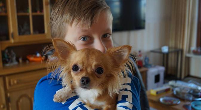 Heerlijk buitenaf, hondenoppas in Pijnacker