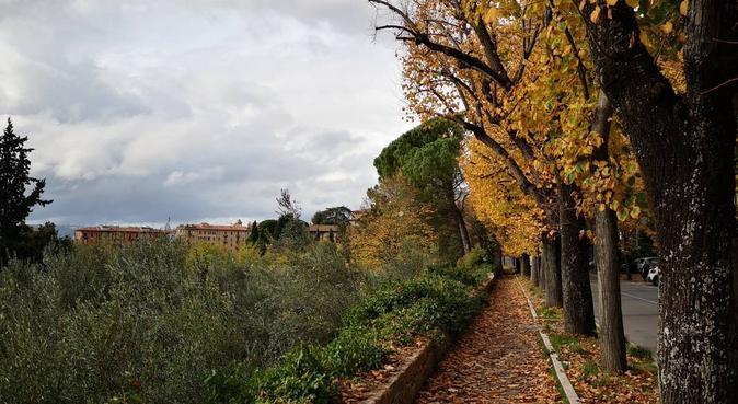 passeggiate, coccole e biscottini, dog sitter a Roma