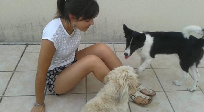 LE PARADIS DES ANIMAUX A QUATRE PATTES, dog sitter à Saint-Erblon