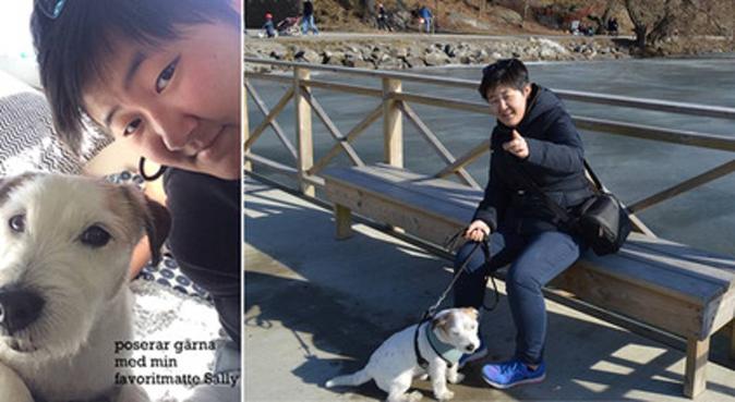 Lekfull hundpassning med en glad tjej i Vasastan, hundvakt nära Stockholm