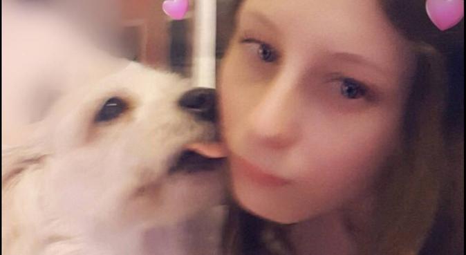 Aime les animaux depuis petite, dog sitter à Toulouse, France