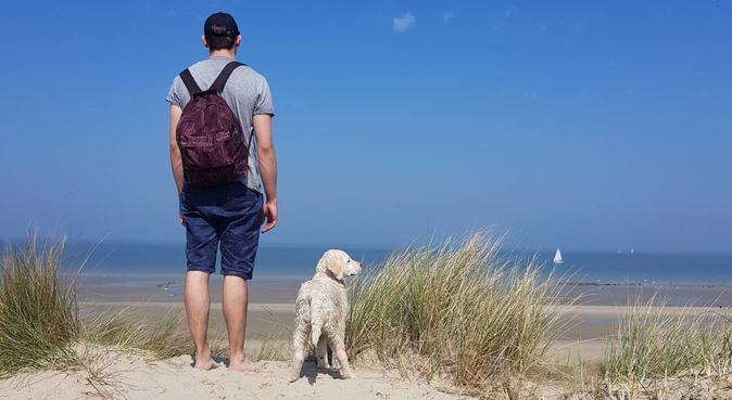 Charlie & Co, dog sitter à Lille