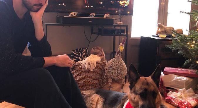 Ultimate dog sitter, hondenoppas in Amsterdam
