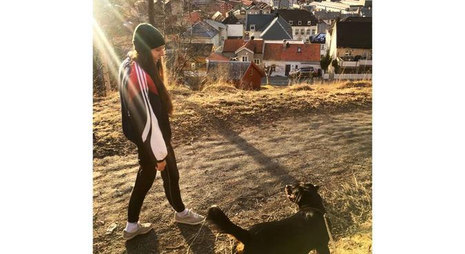 Turjente søker turkamerat, hundepassere i Trondheim