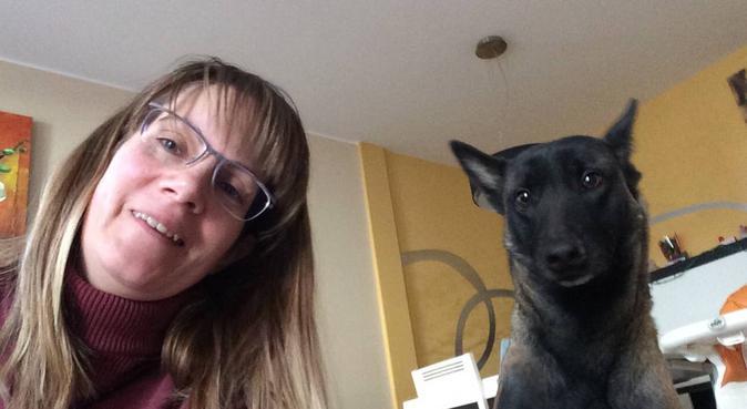 Un perro satisfecho, un perro feliz, canguro en Piera, España