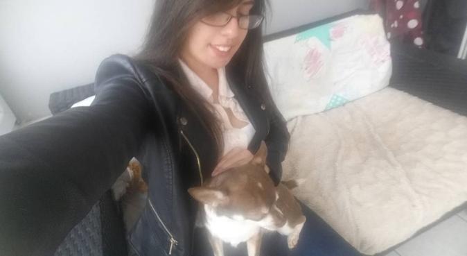 Gabby's doggy care in Birmingham, dog sitter in BIRMINGHAM
