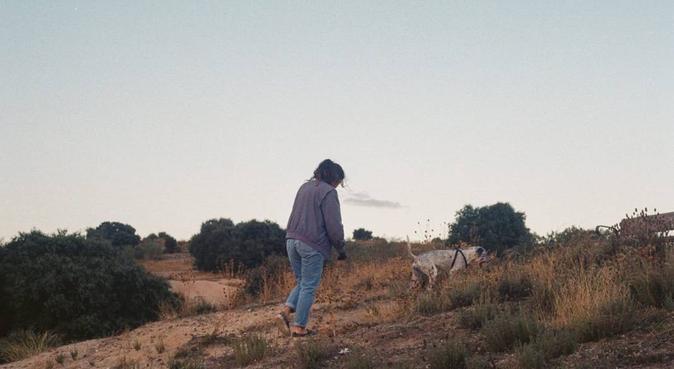 Paseo perruno, canguro en Las Rozas