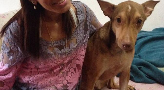 Friendly Pet Sitter in Sendling und Haras, dog sitter in muchen