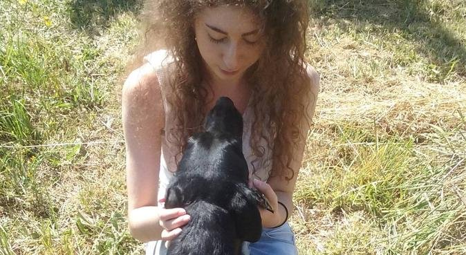 Une amoureuse des animaux, dog sitter in Clamart