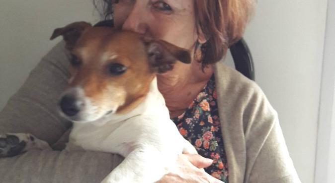 la maison du bonheur passionnée des chiens, dog sitter à Avignon