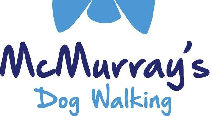 Friendly loving dog walker and home boarding, dog sitter in Bradford