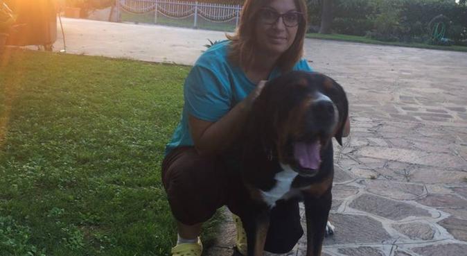 Gli animali, spesso, sono meglio delle persone!, dog sitter a Nonantola