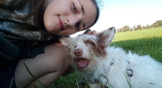 Ich liebe Hunde, Hundesitter in Ebersberg, Deutschland