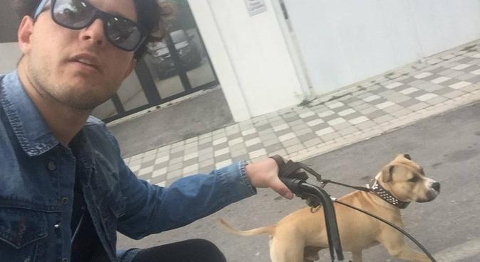 Passeggiate in città e corse nei parchi, dog sitter a Spoltore