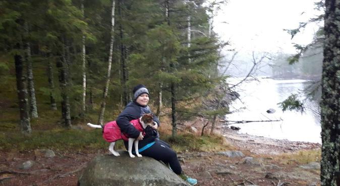 Kärleksfull hundpassning på Källarlyckan, hundvakt nära Hjo, Sverige