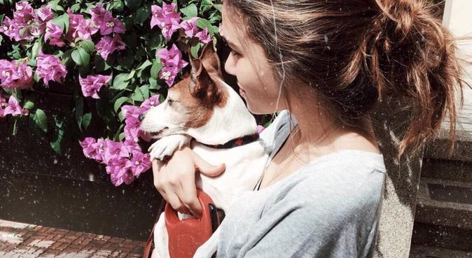 Que d'amour ! <3, dog sitter à Villeurbanne