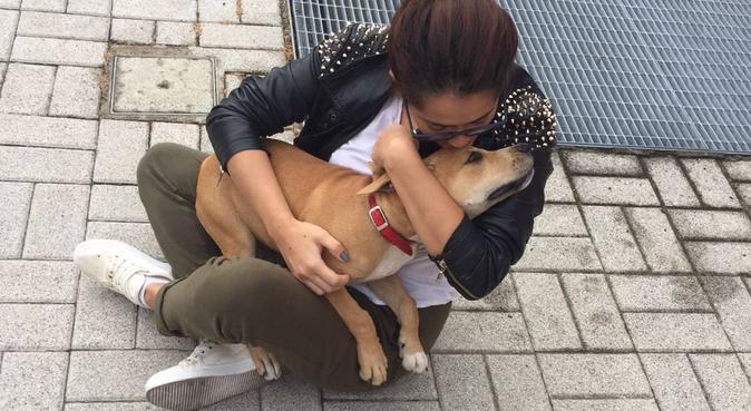 Une amie Colombienne, dog sitter à PARIS 5EME ARRONDISSEMENT