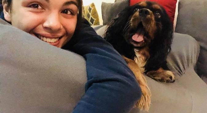 Passeggiate con i nostri migliori amici, dog sitter a Padova, PD, Italia