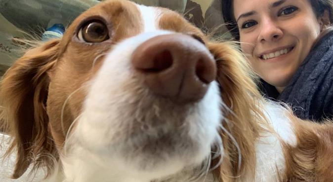 Passeggiate e coccole con un'amante degli animali, dog sitter a Venezia, VE, Italia