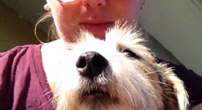 Doggy Doris kärleksfulla hundpassning, hundvakt nära Sollentuna