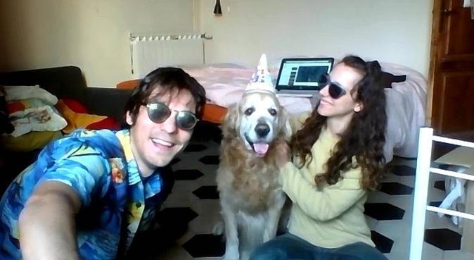Serietà e coccole., dog sitter a Pisa