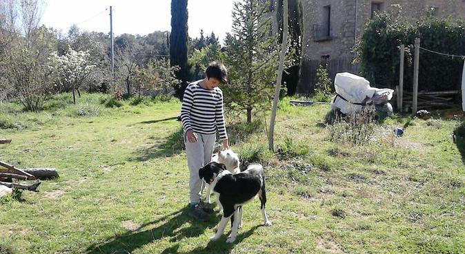 Dog Heaven Parc Natural Montnegre, canguro en Tordera