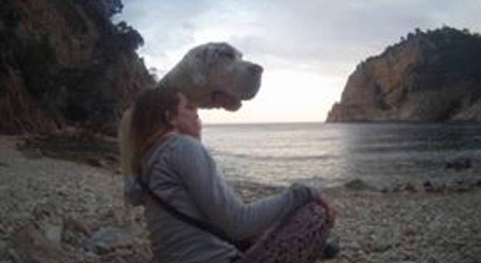 pasión por los perros, canguro en Barcelona