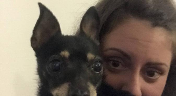 Una vita per gli animali, dog sitter a Padova