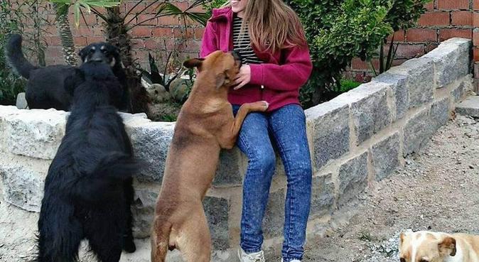Tu amigo también será el mío♡, canguro en Valladolid, España