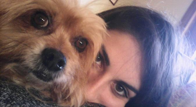Passeggiate e coccole per il tuo cucciolo, dog sitter a Parma