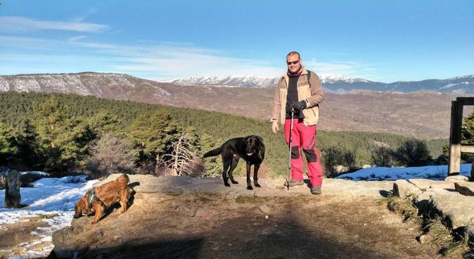 Tu perro, uno más de mi familia - chalet en finca, canguro en Madrid