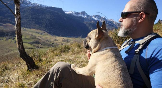 Estaremos encantados de cuidar a tu perr@!, canguro en Sant Feliu de Llobregat, Spain