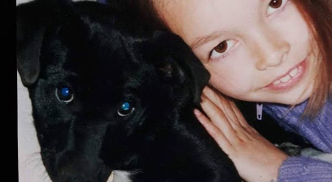 Flexible Dog Walker/Sitter based in Henleaze, dog sitter in Bristol
