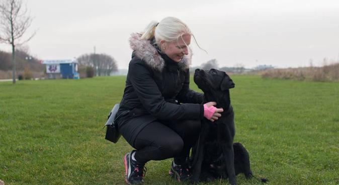 Malmö: Alla hundars bästa vän!, hundvakt nära Malmö