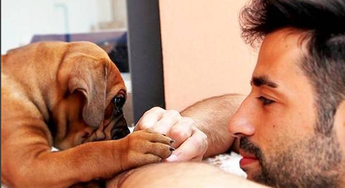 Il benessere del cane a 360°, dog sitter a Rimini