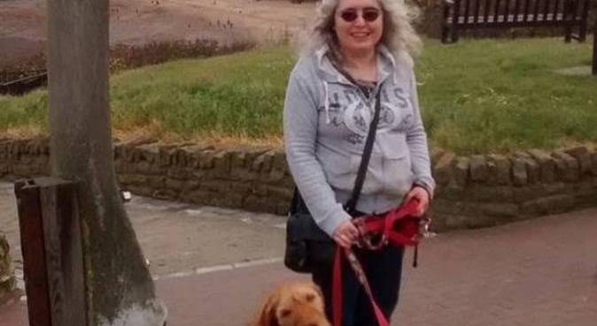 Accredited dog trainer now offering solo walks, dog sitter in Sheffield