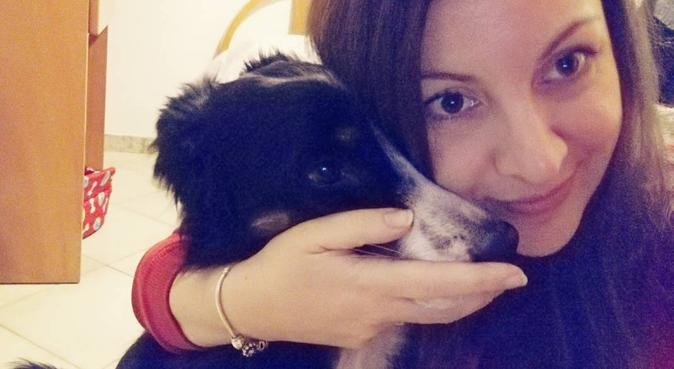 Long walks and big cuddles, dog sitter in Hitchin, Regno Unito