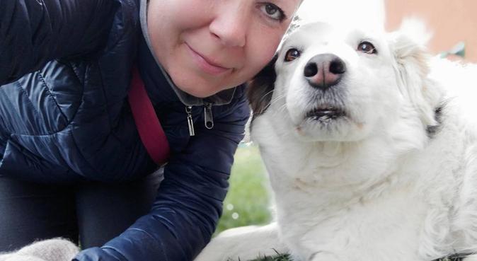 Vita da cani...felici!, dog sitter a Mediglia, MI, Italia