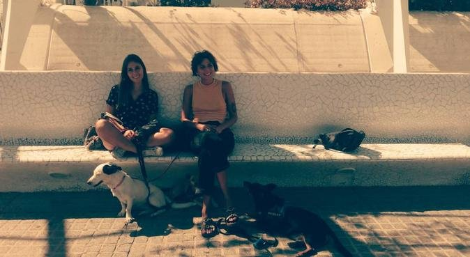 Good vibes and love to your dog and cat., canguro en Valencia