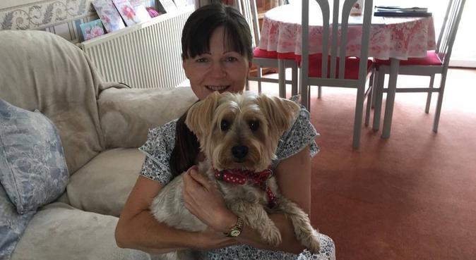 I love having a dog around, dog sitter in Luton