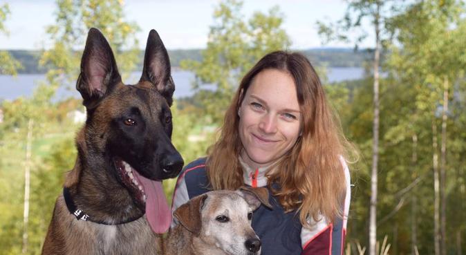 Kärlekfull hundpassning på karlskoga, hundvakt nära Karlskoga