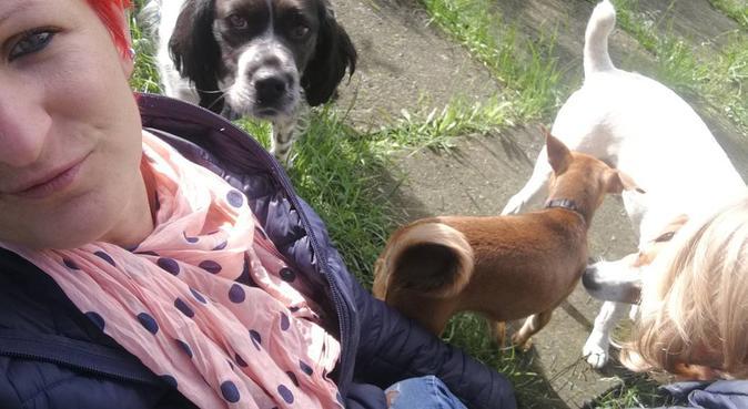 Vacanze... in FAMIGLIA !, dog sitter a Scanzorosciate